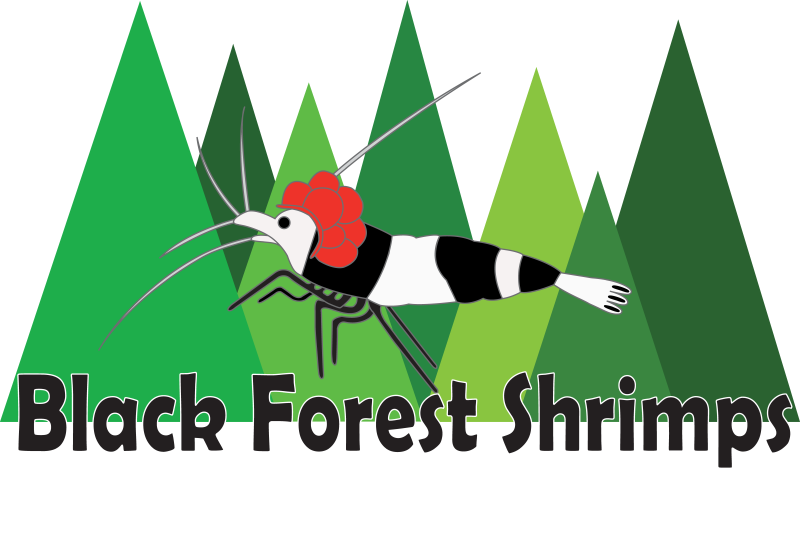 Black Forest Shrimps