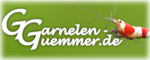 Garnelen Gümmer (temp)